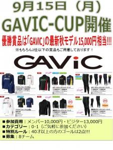 20140915_gavic_cup